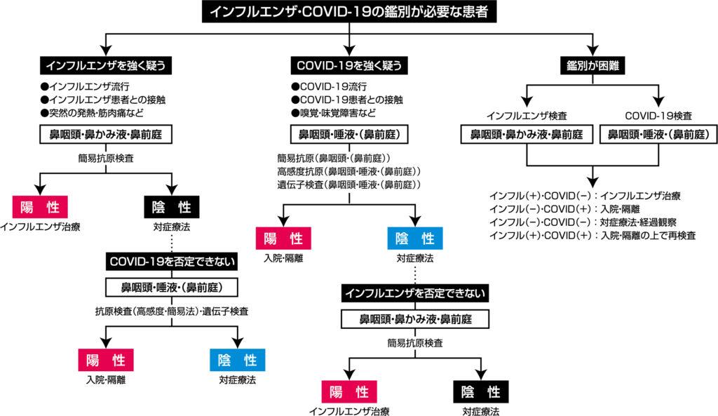 日本感染症学会提言の診療検査のフローチャート
